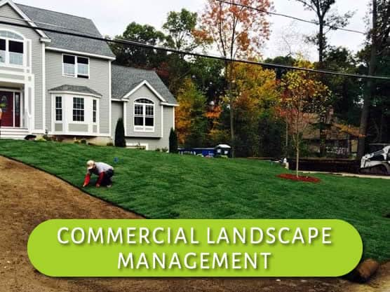 Mueskes Commercial Landscape Management Services
